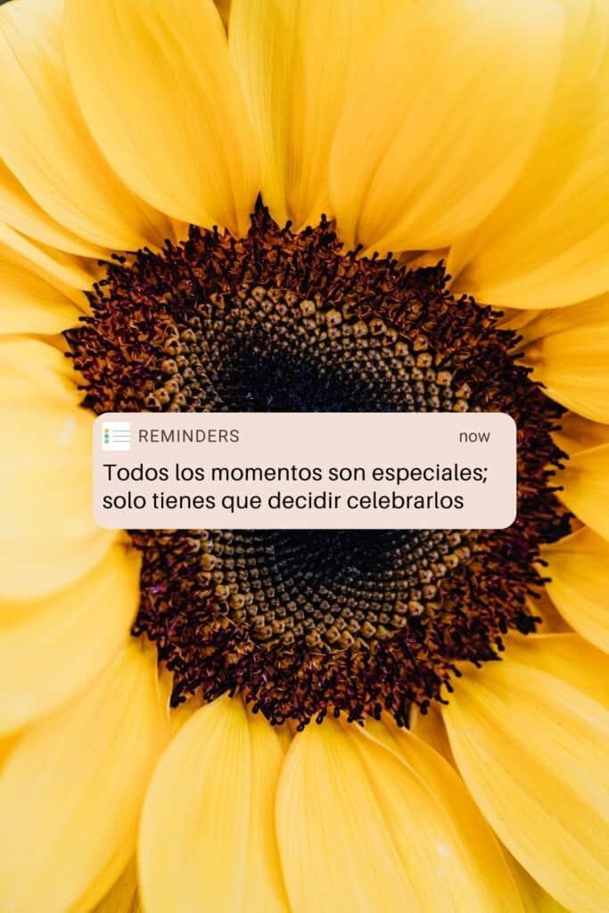 Todos los momentos son especiales; solo tienes que decidir celebrarlos, positive quotes in spanish