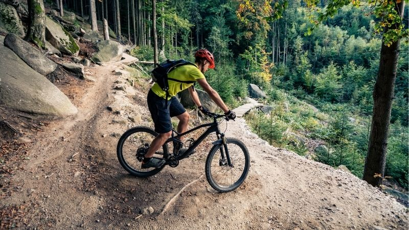 mountain bike trails in Wisconsin, Mountain biker riding on bike on forest dirt trail