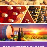 Hoping to visit the best wineries in Door County, Wisconsin? Here are the best insider tips for Door County wine tasting experiences and romantic getaways in Wisconsin. #Wisconsin #DoorCounty #DoorCountyWisconsin #WisconsinWineries #USATravel #Wineries #Distillery #RomanticGetaway #SturgeonBay #FishCreek