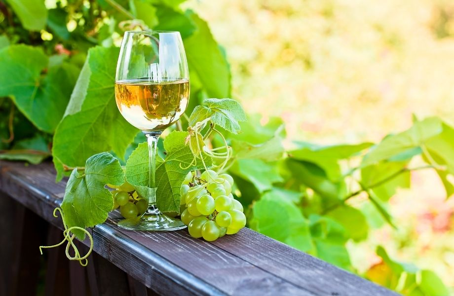 door county wine trail, glass of white wine at simon creek winery