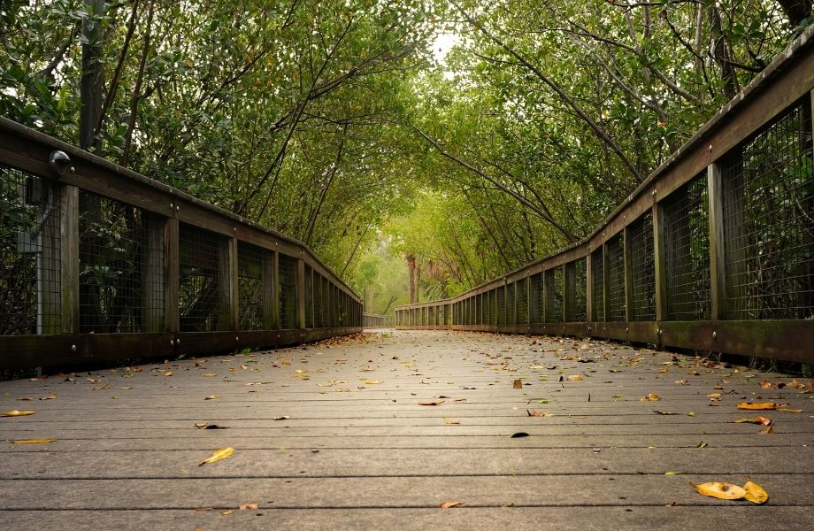 romantic trails in Wisconsin Dells, riverwalk bridge