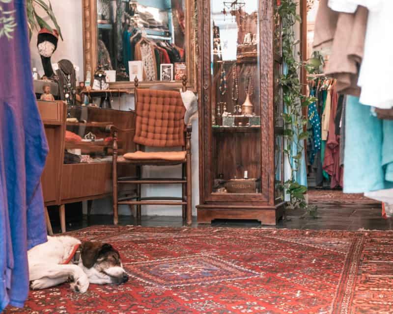 shopping in bruges belgium, antique