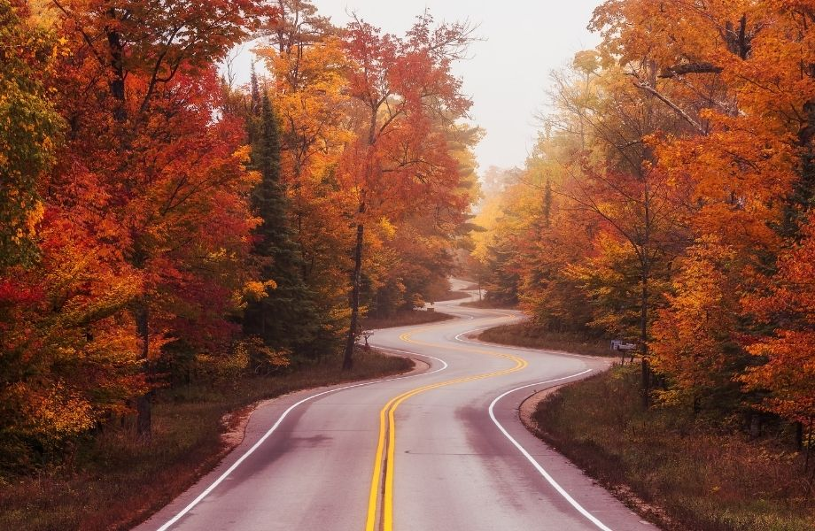 things to do in Door County in October, winding road in door county with fall leaves lining the road