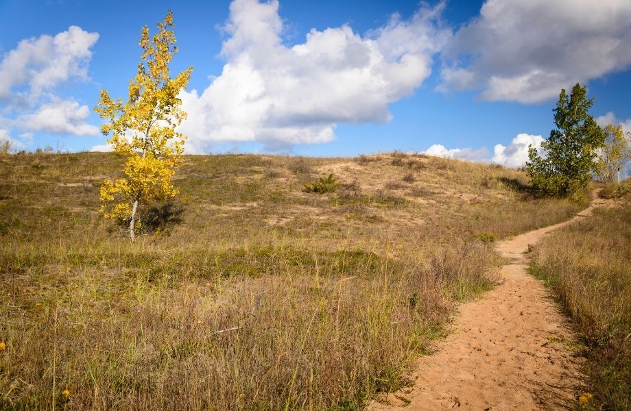 places to hike in southern Wisconsin, sandy path along the Kenosha Dunes Trail