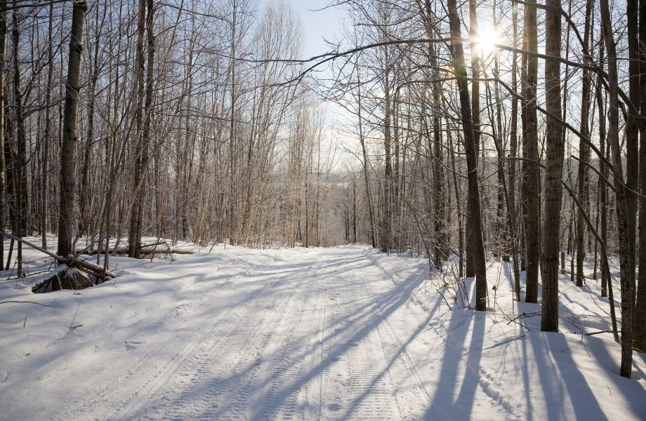 snowmobiling trails wisconsin, Snowmobile Trail at Midday